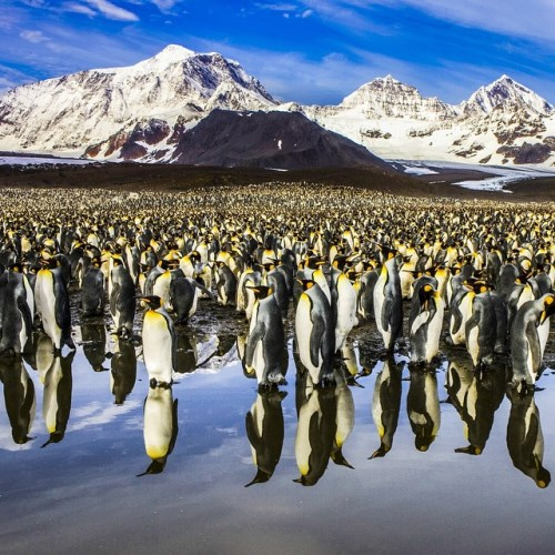 National Geographic_foto_30
