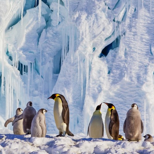 National Geographic_foto_4