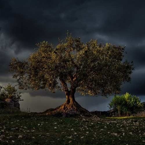 National Geographic_foto_5