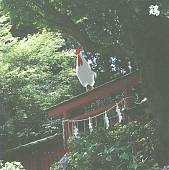 Niwatori: 13 Japanese Birds, Pt. 10