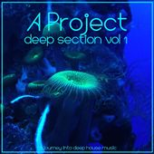 Deep Section , Vol. 1